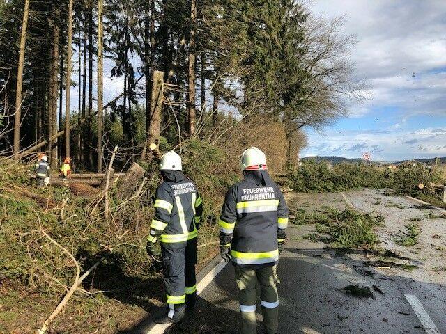 Wetter Brunnenthal: 7-Tage Prognose | blaklimos.com