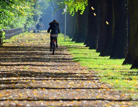 Radfahren im Herbst: Die wichtigsten Tipps im Überblick