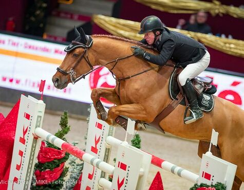 Das Waren Die Amadeus Horse Indoors In Salzburg Salzburg24